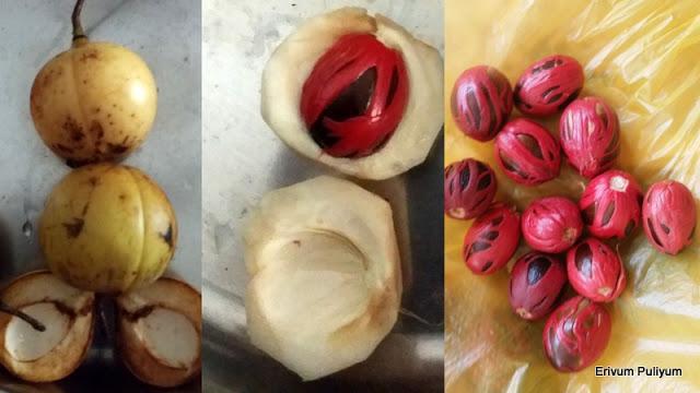 Jathikka Achar | Jathikka Thodu Achar | Nutmeg Fruit Pickle